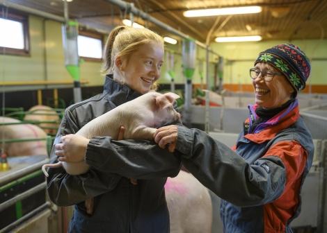 Bilde av ein elev med grisunge